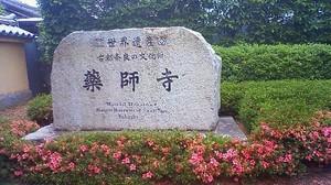 Imo_yakushiji2