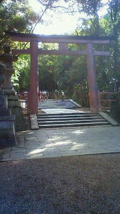 Imo_kasuga3