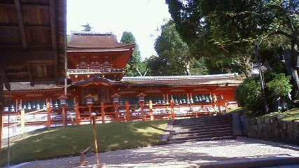 Imo_kasuga6