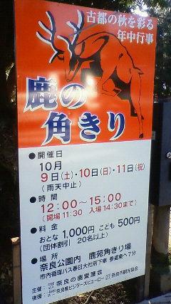 Imo_tsuno1