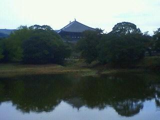 Nara103110