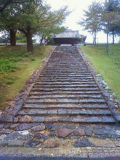 Nara10315