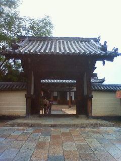 Nara10316