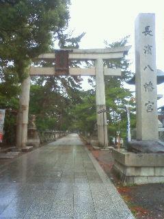 Imo_nagahama6