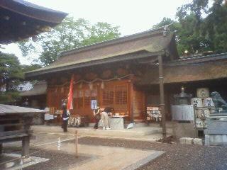 Imo_nagahama7