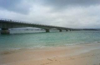 Imo_okinawa11