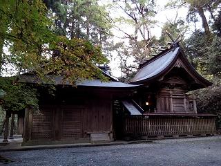 Imo_kushifuru4