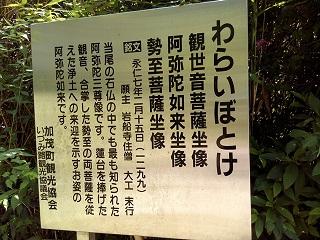 Imo_seki6