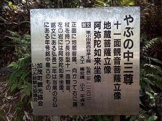 Imo_seki9
