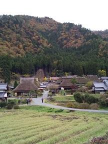 Imo_miyama1