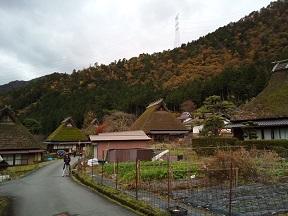 Imo_miyama6